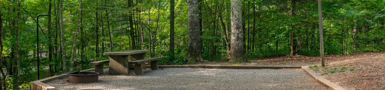 Lake Powhatan Hard Times #69 CampsiteLake Powhatan Hard Times #69