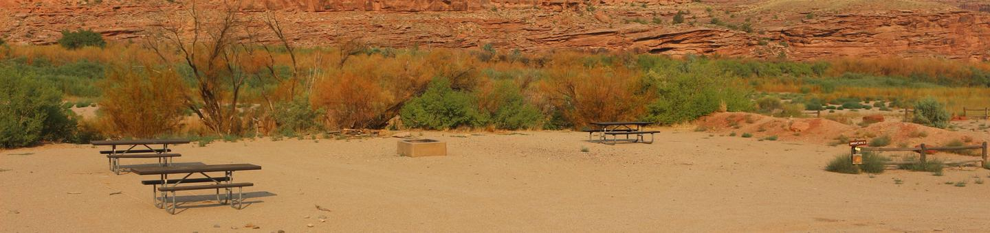 Gold Bar Group Site D picnic tables, fire rings, and a sandy, open area for tents. In the distance, vegetation lines the Colorado River.