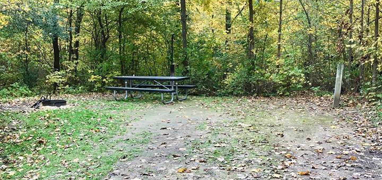 Site 4 ground image