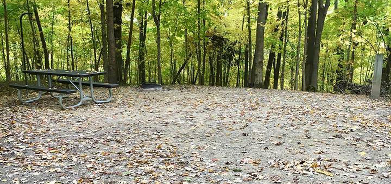Site 21 ground image