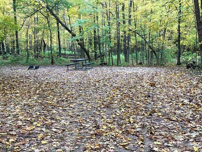Site 24 ground image