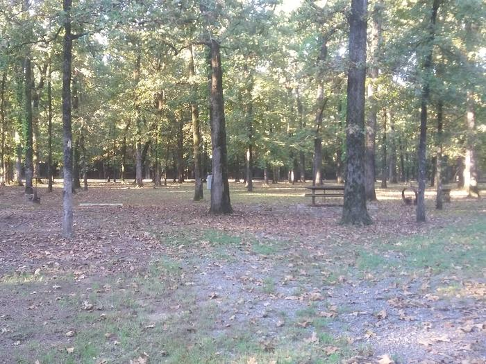 100 yards to Shower/Restroom. 500 Yards to Lake Merrisach Access.B-4