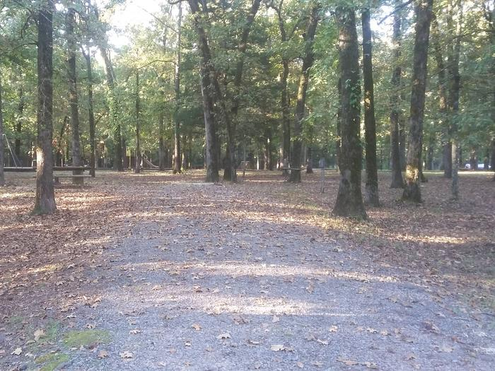 50 yards to Shower/Restroom. 500 Yards to Lake Merrisach Access.B-7