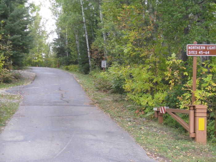 Paved road in campground.Northern Lights Loop Road, a paved road providing access to campsites.