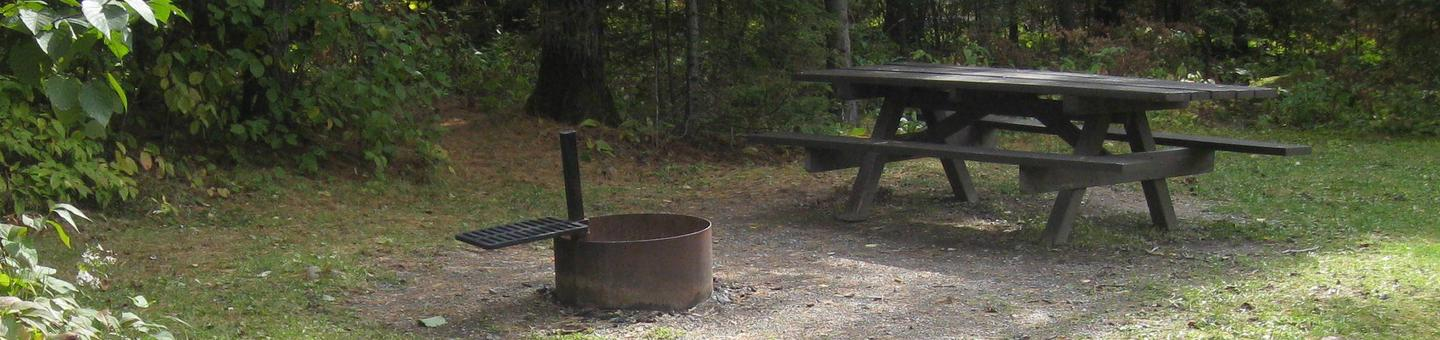 Picture of campsite.Campsite with table, fire ring,and tent pad.