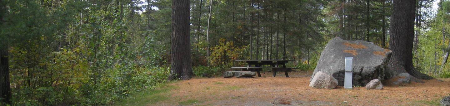 Picture of campsite.Back-in campsite with table, fire ring, and tent pad.