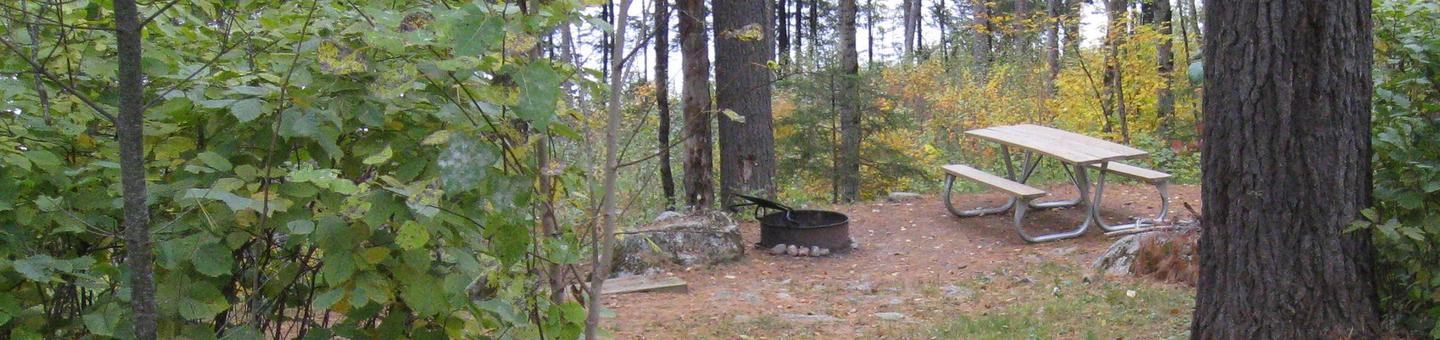 Picture of campsite.Campsite with table, fire ring, and tent pad.