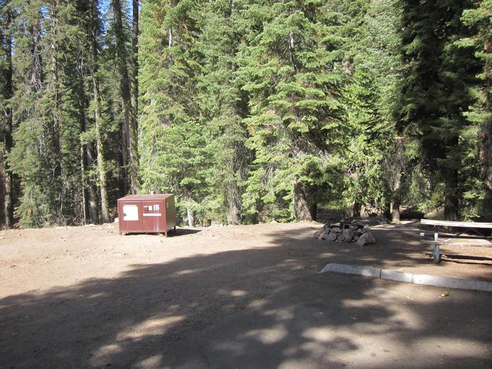 Site 15, Partial Shade, Near Creek and Meadow
