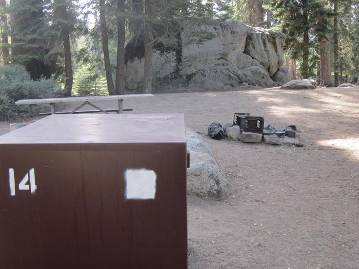 Site 14, Partial Shade, Near Creek and Meadow