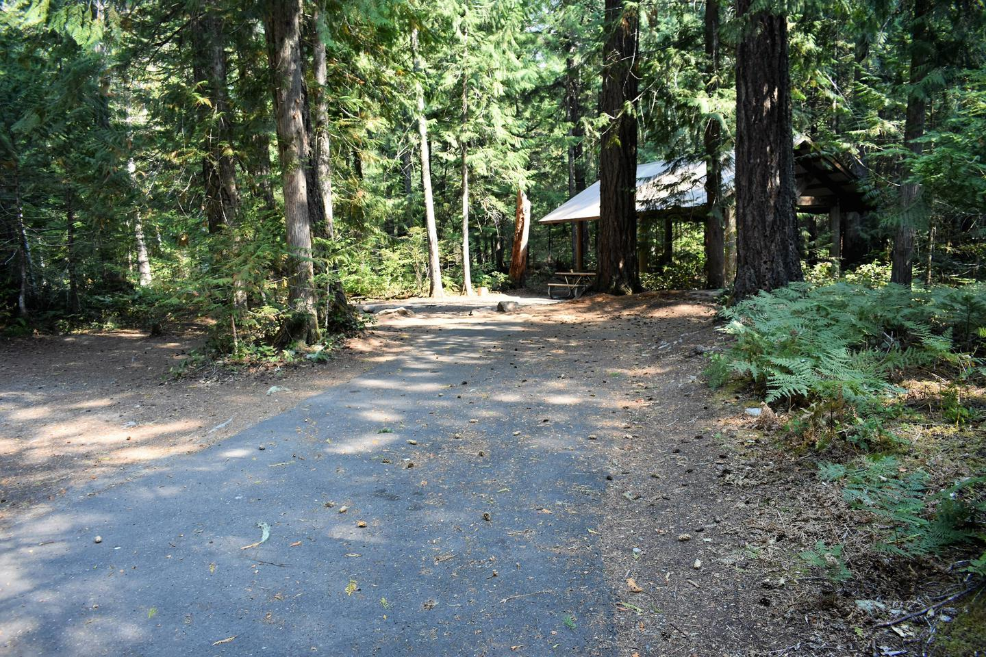 Group shelter in distance with parking area in foregroundMain parking area which can accommodate RV's and trailer