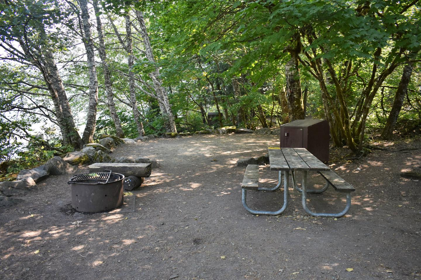 Fire ring, tent area, picnic table, and food storage lockerView of campsite