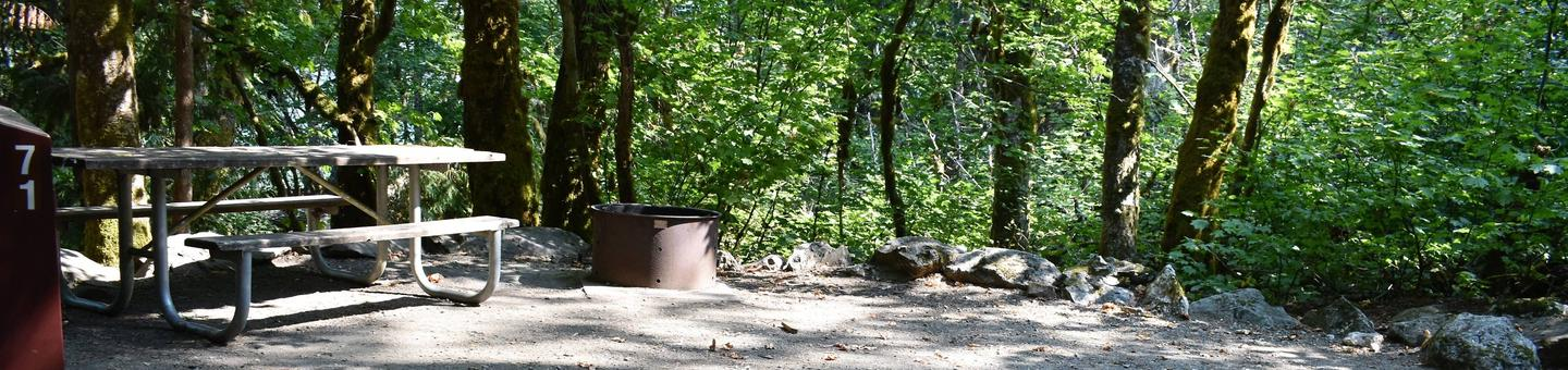 Picnic table and fire ringView of campsite