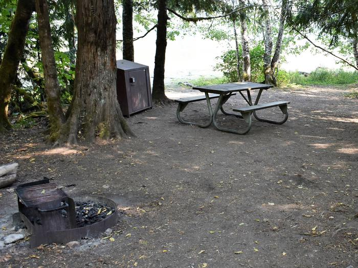 Fire ring, food storage locker and picnic tableView of campsite