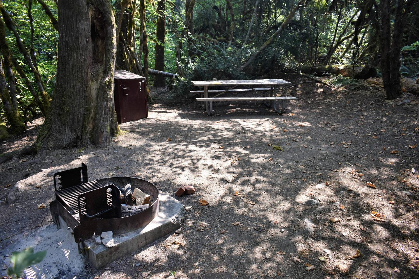 Fire ring, food storage locker, and picnic tableView of campsite