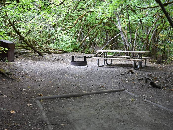 Food storage locker, fire ring, picnic table, and tent padView of campsite