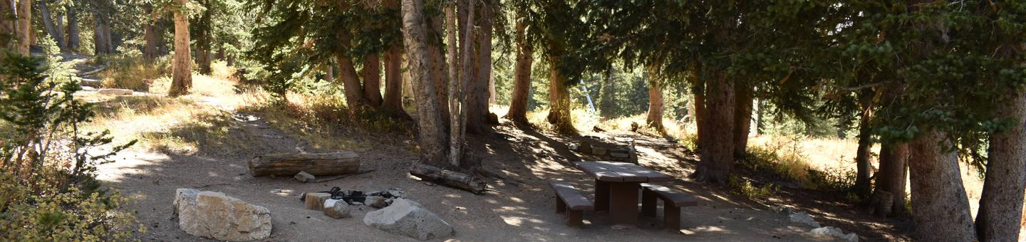 Site 2Albion Basin Campground, Little Cottonwood Canyon