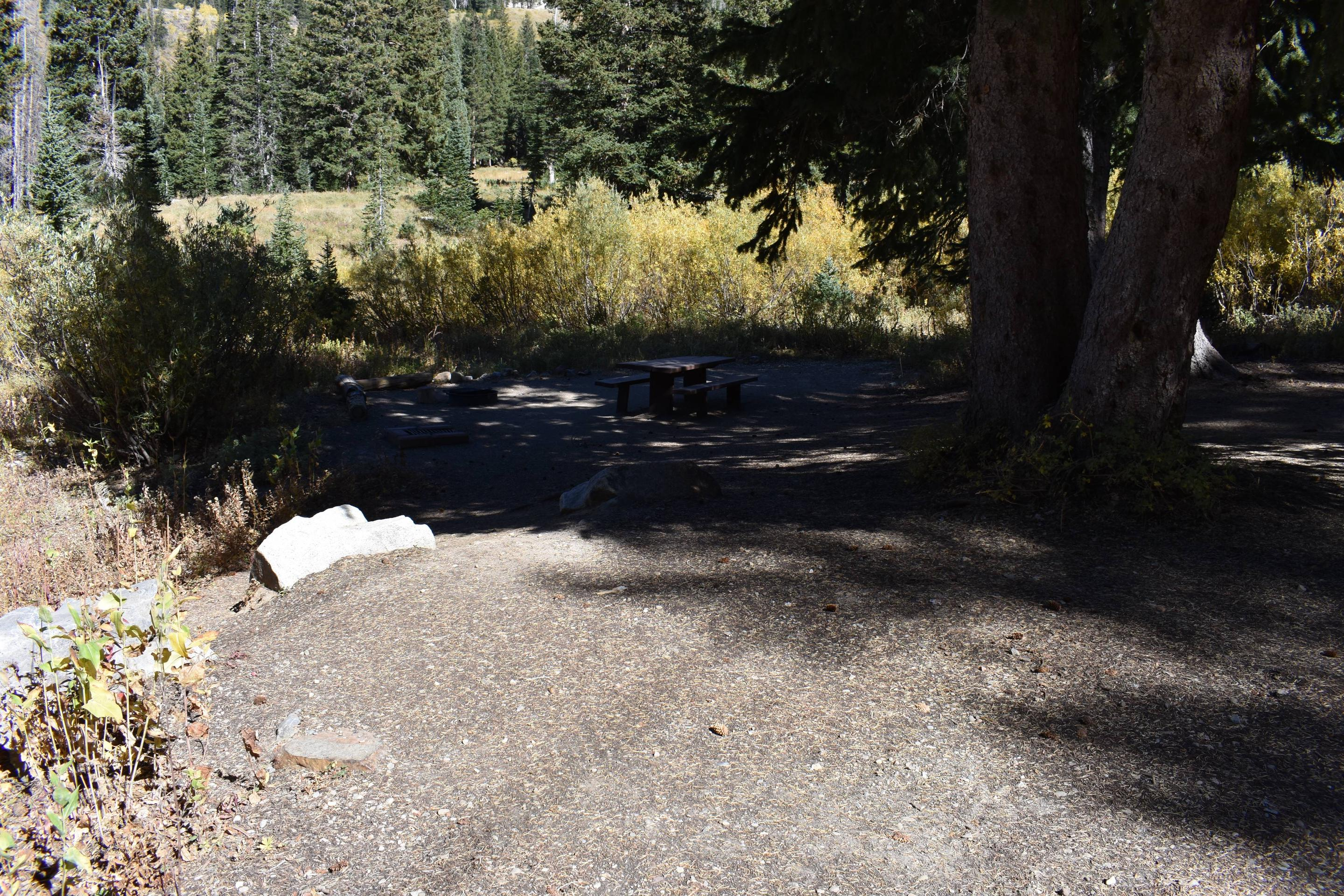 Site 4Albion Basin Campground, Little Cottonwood Canyon