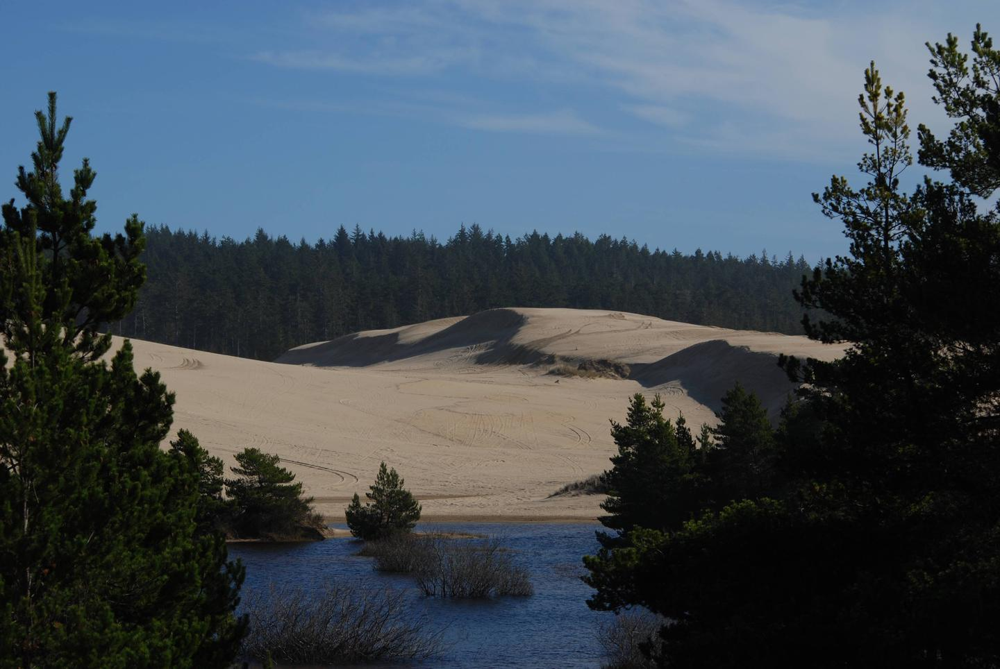 Shore pines and blue lake with sand dunes and conifer covered hills in background.Spinreel Sand Camping