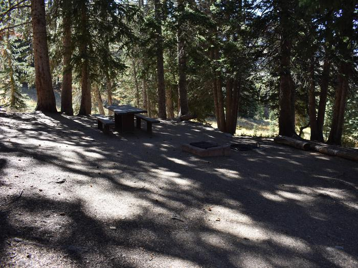 Site 6Albion Basin Campground, Little Cottonwood Canyon
