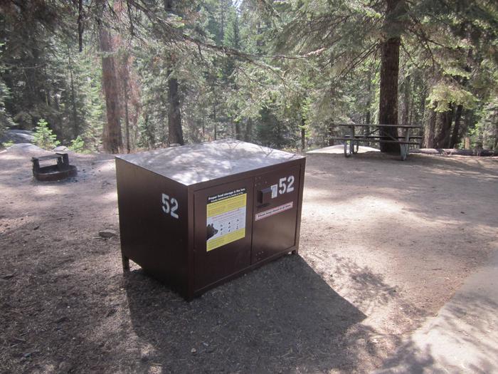 Site 52, Partial Shade, Near Creek