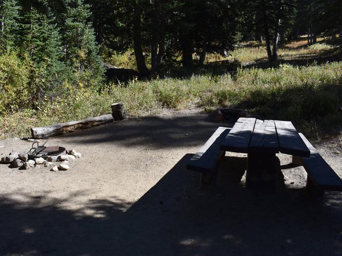 Site 8Albion Basin, Little Cottonwood Canyon