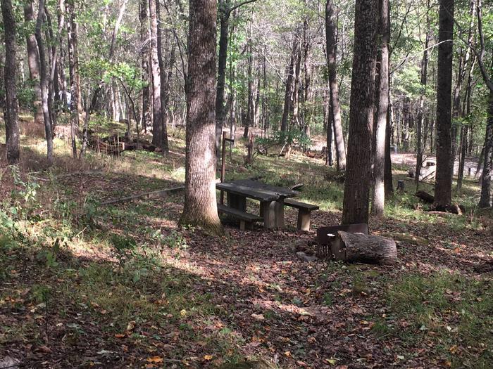 B Loop Site 32 - Tent Nonelectric
