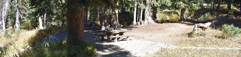 Site 10Albion Basin, Little Cottonwood Canyon