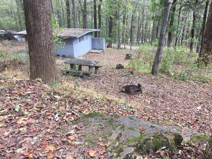 B Loop Site 37 - Tent Nonelectric