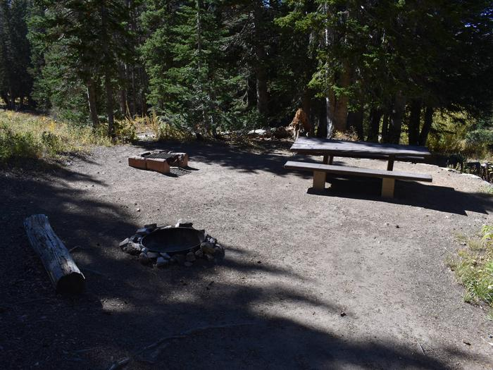 Site 15Albion Basin, Little Cottonwood Canyon