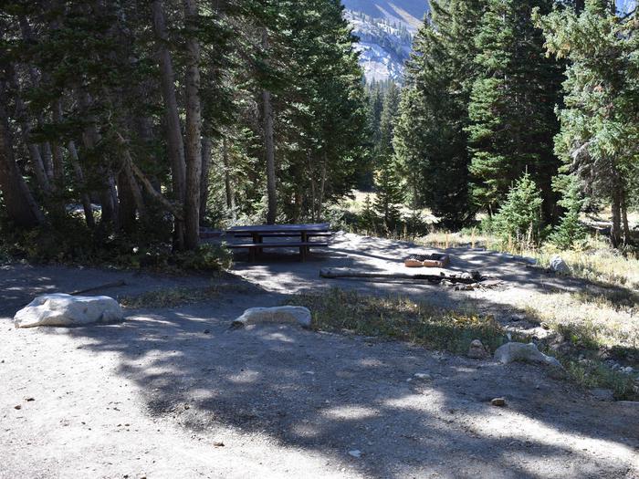 Site 19Albion Basin, Little Cottonwood Canyon