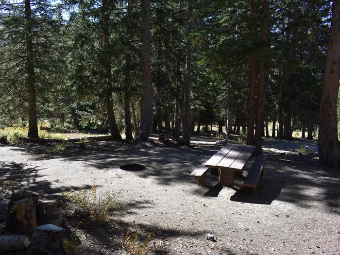 Site 2021Albion Basin, Little Cottonwood Canyon
