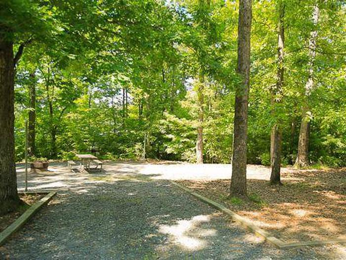 Badin Lake Campground-Site 005