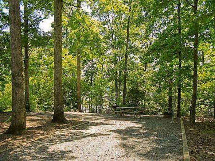 Badin Lake Campground-Site 014