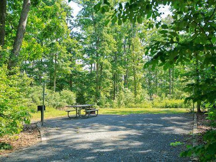 Badin Lake Campground-Site 016