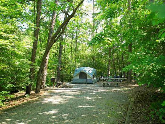 Badin Lake Campground-Site 018