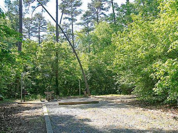 Badin Lake Campground-Site 019