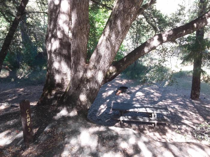 Sarah Totten Campground along the Klamath Wild and Scenic RiverSarah Totten Campground site #3