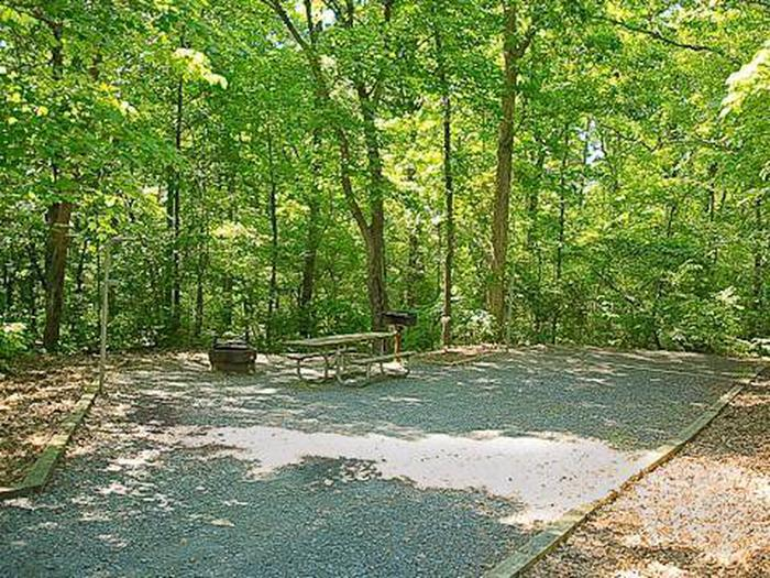 Badin Lake Campground-Site 025