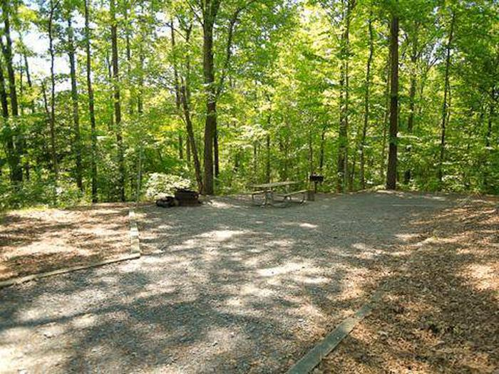 Badin Lake Campground-Site 027