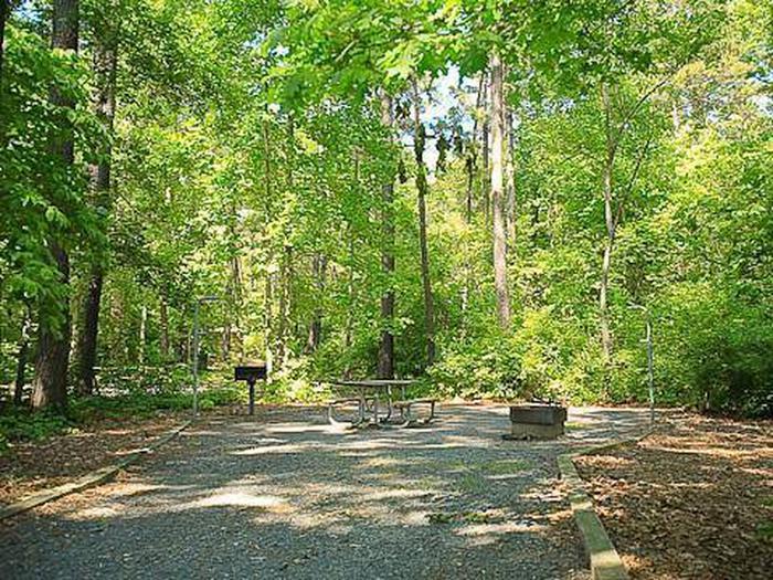 Badin Lake Campground-Site 026