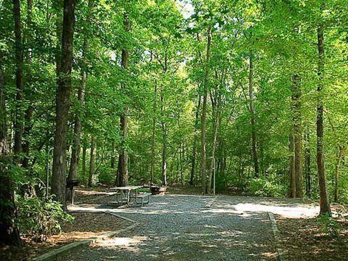 Badin Lake Campground-Site 029