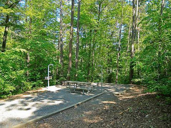 Badin Lake Campground-Site 032
