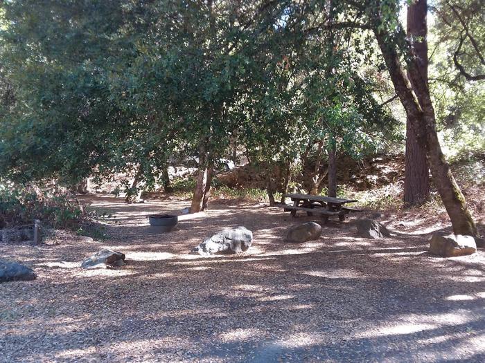 Sarah Totten Campground along the Klamath Wild and Scenic RiverSarah Totten Campground site 310
