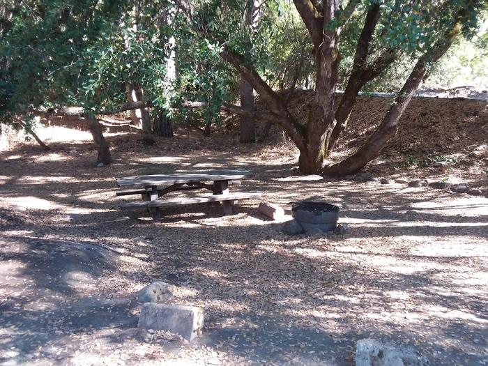 Sarah Totten Campground along the Klamath Wild and Scenic RiverSarah Totten Campground site #11