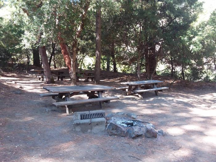 Sarah Totten Campground along the Klamath Wild and Scenic RiverSarah Totten Campground site #12