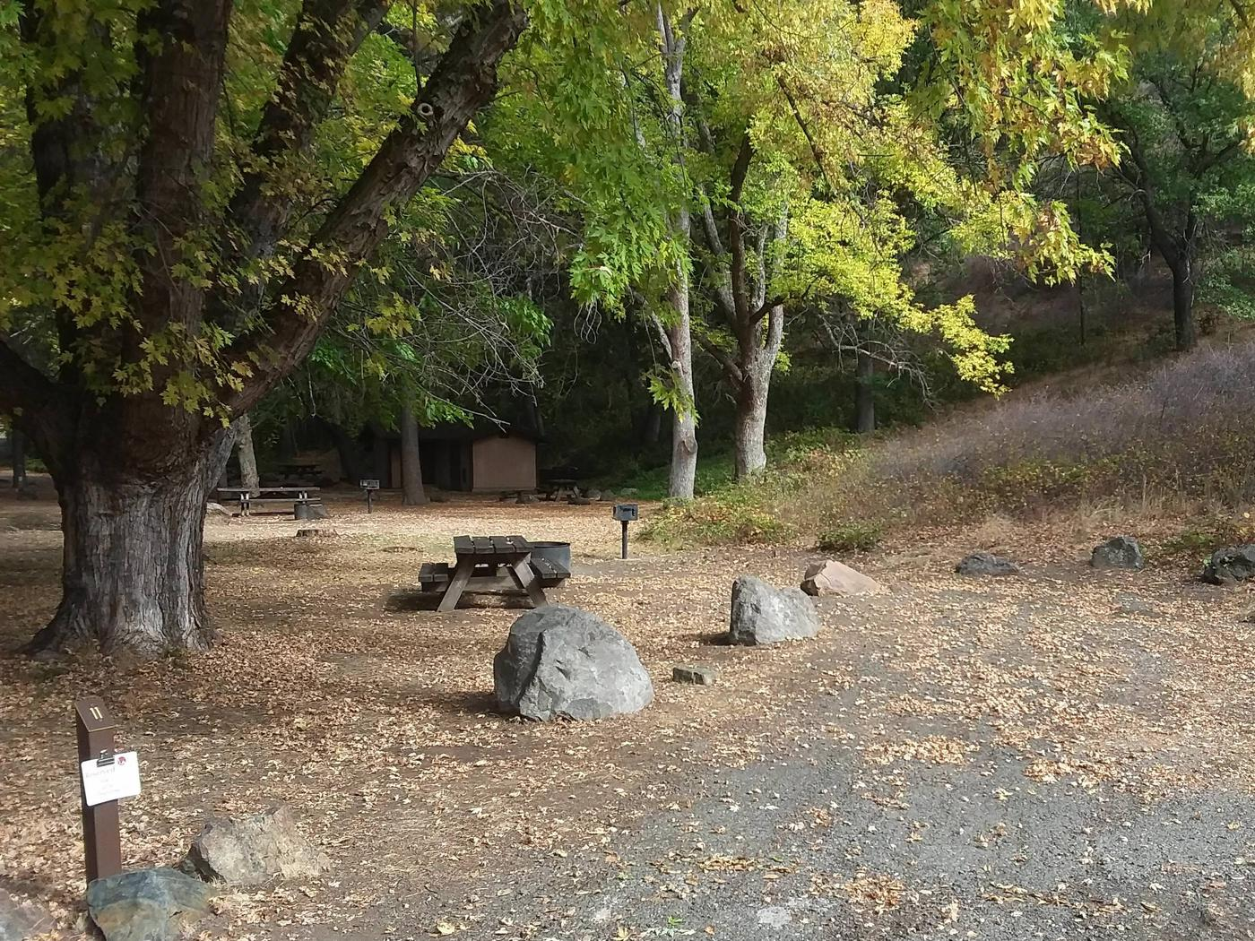 Tree of Heaven Campground along the Klamath Wild and Scenic RiverTree of heaven Campground site #11
