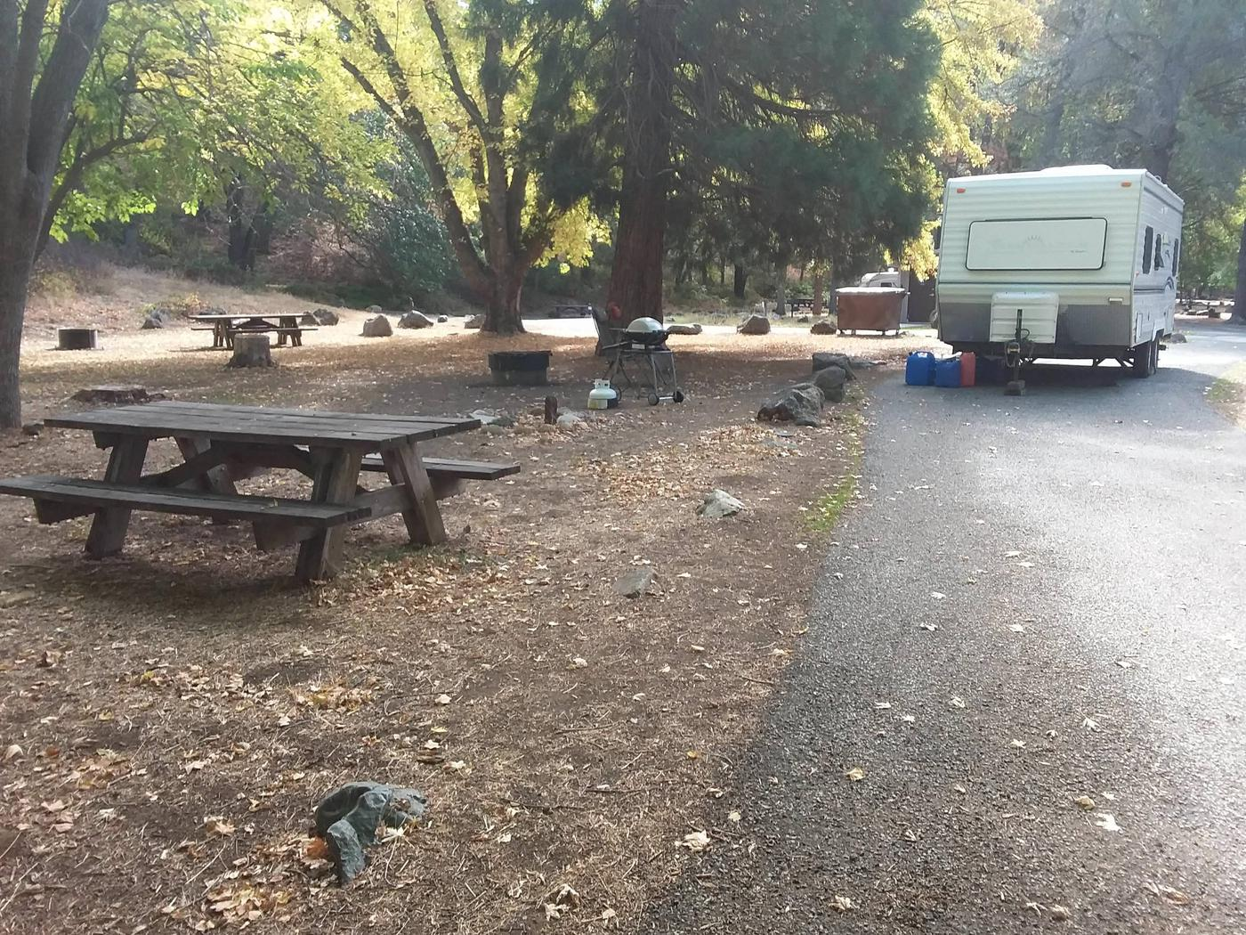 Tree of Heaven Campground along the Klamath Wild and Scenic RiverTree of Heaven Campground site #13