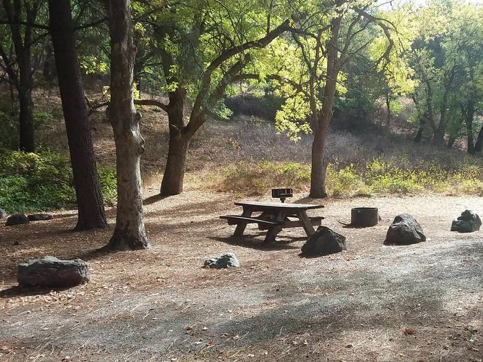 Tree of Heavne Campground along the Klamath Wild and Scenic RiverTree of Heaven Campground site #14