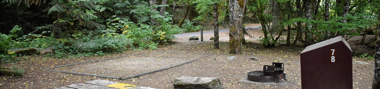 Tent pad, fire ring, and food storage lockerView of campsite