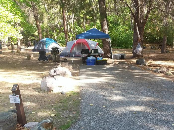 Tree of Heaven Campground along the Klamath Wild and Scenic RiverTree of Heaven Capground site #21